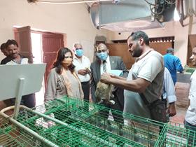 خلال تفقدها المزارع الإنتاجية بمشتهر: راندا مصطفى تؤكد على تطوير المراكز والوحدات ذات الطابع الخاص