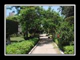إنشاءات كلية الزراعة مشتهر
