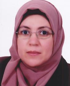 Mohamed El Sayed Sobhy Abu Salem
