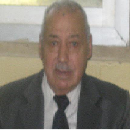Elsayed Hefny Mohamed Hefny