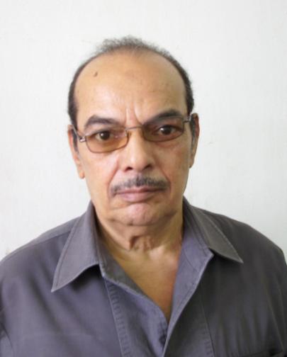 Sayed Abdel-Hameed Ragab