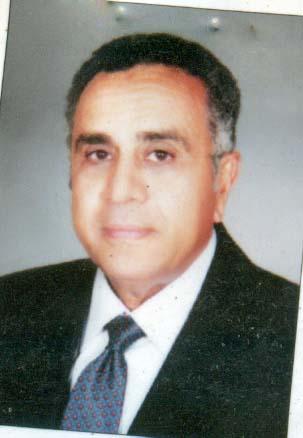 Hassan Abdelaziz Hassan Ismail