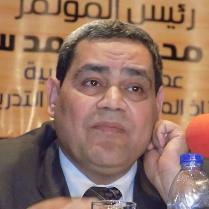 Alaa-El-Din Saad Metwally
