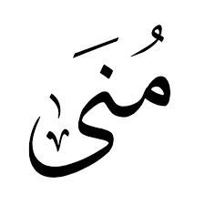 Mona Abdel-Azeem M. Said